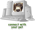 Cyber Visit with your pet!